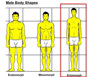 Ectomorph-body-type-e1337456834204